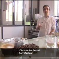 Christophe Servell - Terres de café