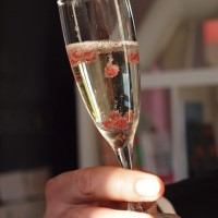 Atelier cocktail moléculaire pour une soirée privée