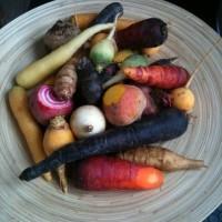 Légumes racines du marché de Joël Thiébault